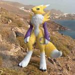 Renamon Cycles Fur2