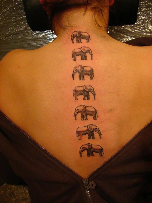 7 elephants