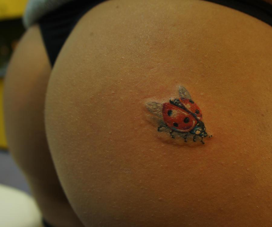 ladybug by strangeris