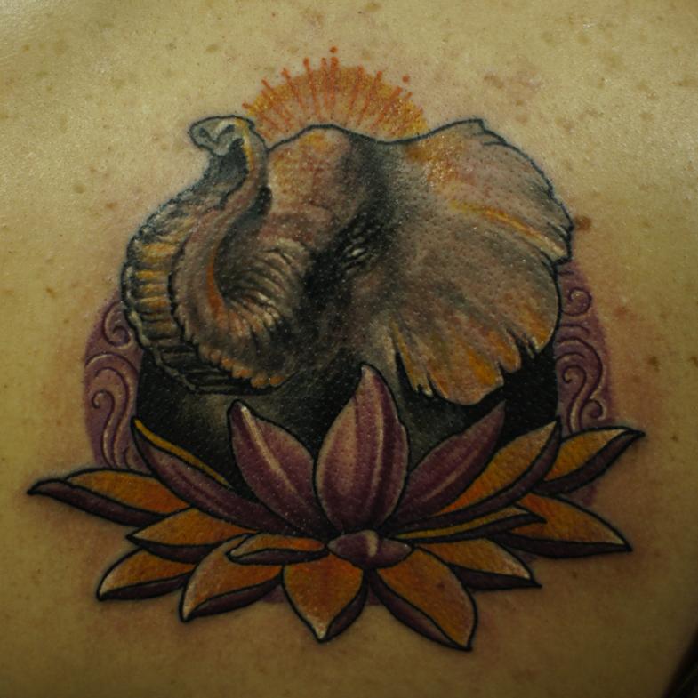 elephant lotus by strangeris
