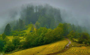 Hill in the mist by miirex