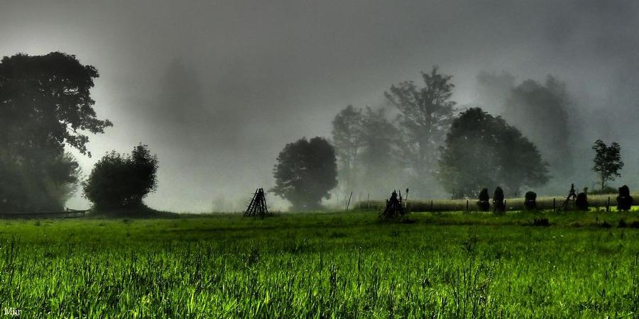 Morning mist by miirex
