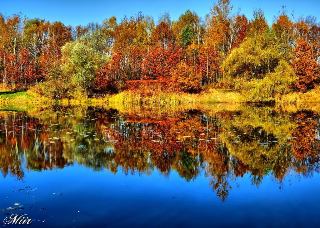 Autumn, blue pond by miirex