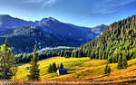 Mountains - Summer - Tatry