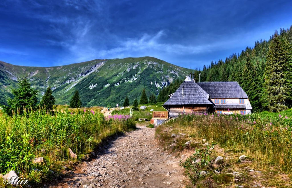 Mountains - Tatry - Hala Kondratowa by miirex