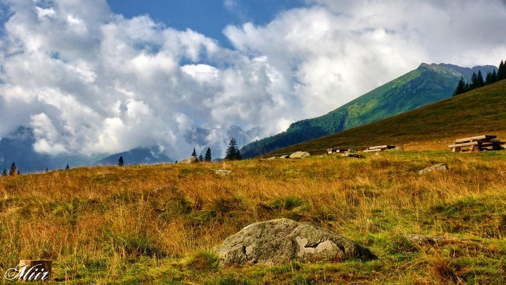 Mountains glade - Rusinowa polana by miirex