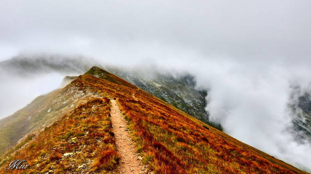 On the edge of fog by miirex