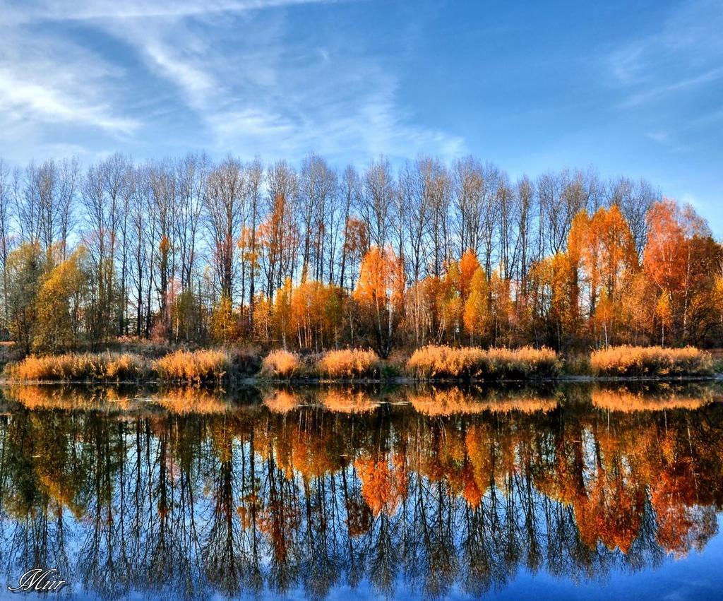 Autumn by miirex