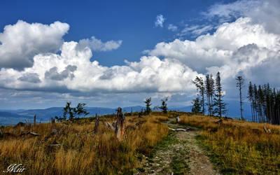 Mountains trail . Beskidy by miirex