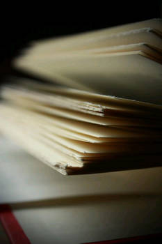 within the pages.