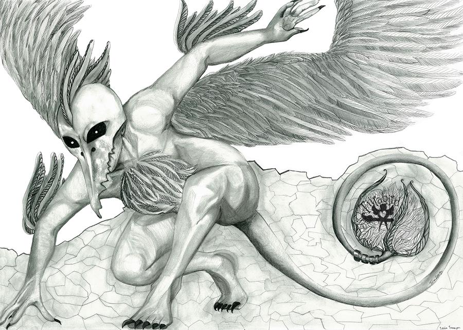 Landing by Tiirabird