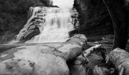 From the Middle of the Falls
