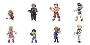 All Gym Leaders for Clowcardruler by FlamingBravery