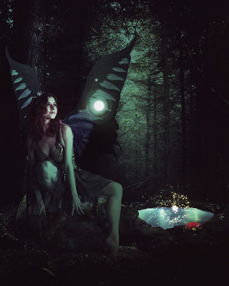 Fantasy Forest Fairy Tale