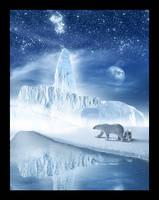 Polar Bear by kntz