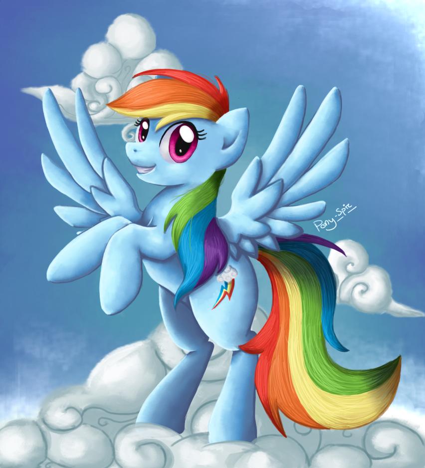 rainbow_dash_by_pony_spiz-d3lp49c.png