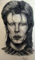Ziggy Stardust by Meliss
