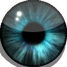Blue iris by HellHoundx666