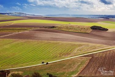 Fields of Normandy by franzli72