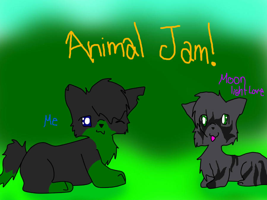 how to draw a cat on animal jam