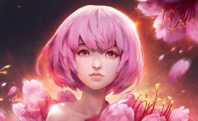 Flower-Cherry Blossoms