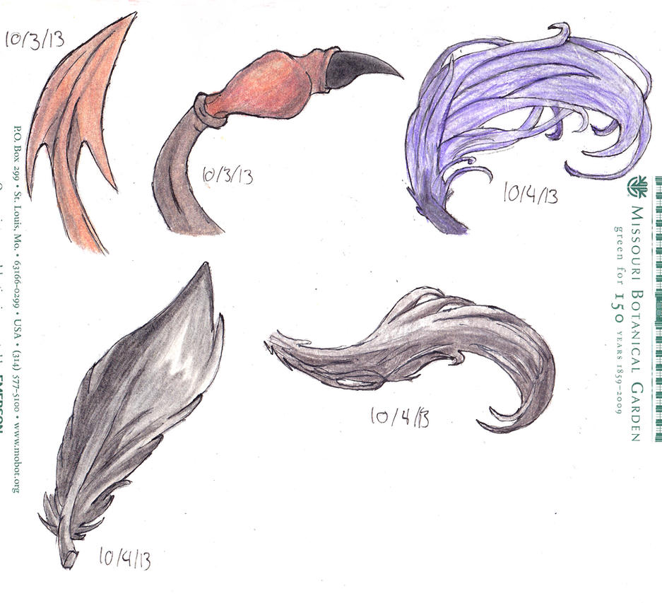 tails wings dragons - photo #2