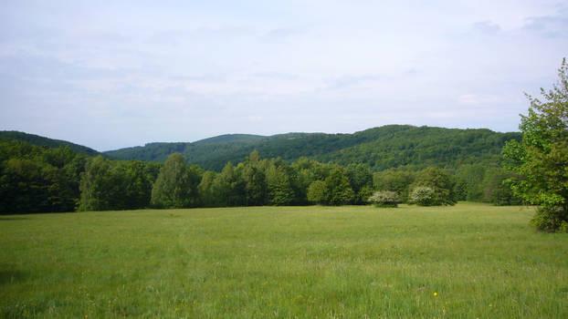 Nature near Banska StiavnicaII
