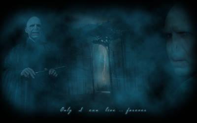 Voldemort HP7 wallpaper by edvordo