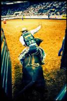 Rodeo no.3 by kalani1980