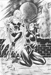Bat-Girl vs Cat Woman-INK by Robinker