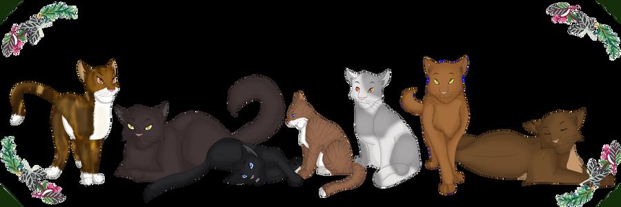 Warriors Cats Cinderpelt Medicine Cats of the F...