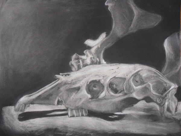 Subtractive charcoal skull 2
