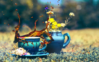 Coffee Splash by Tamerlana