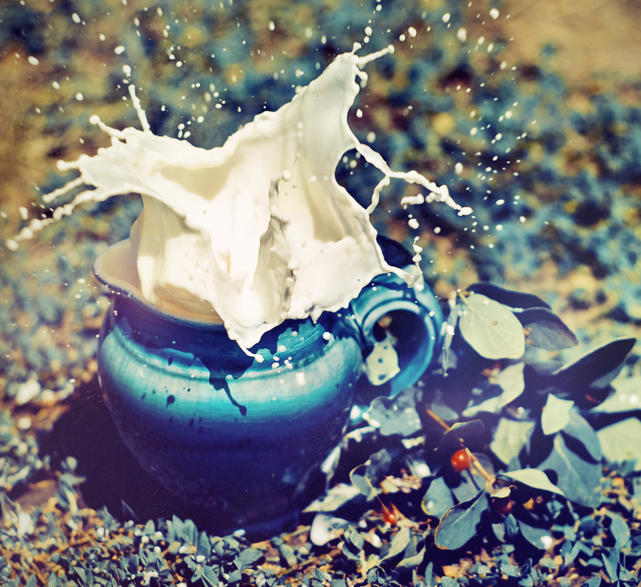 Milk Splash by Tamerlana