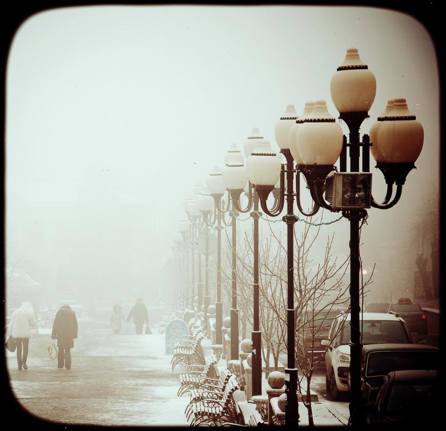 Fog by Tamerlana