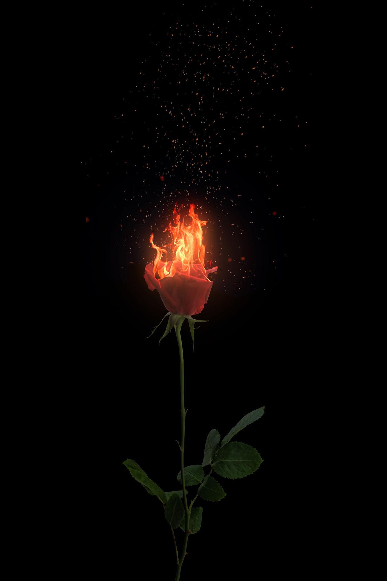Watching it burn