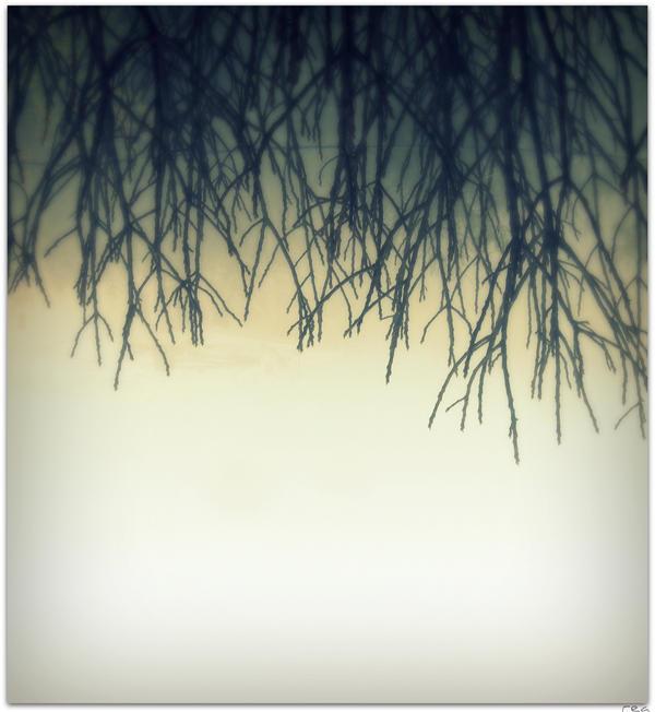 Turn it upside down... by Tharwaithiel
