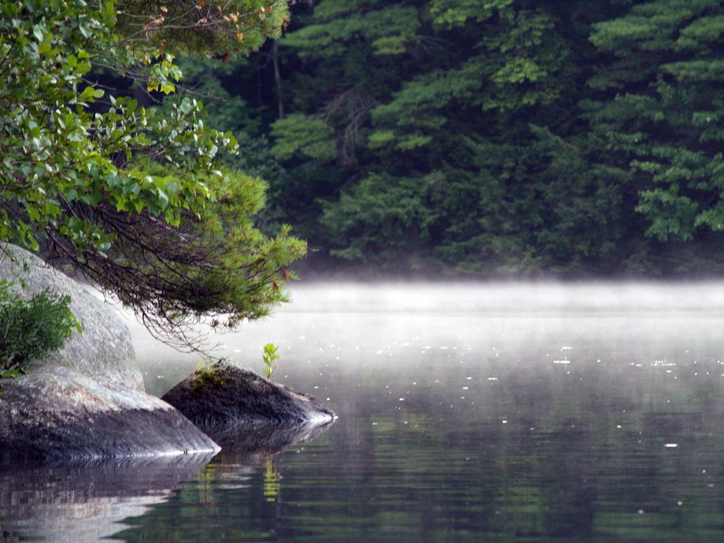 mist on Wilson Pond by Rebecca329