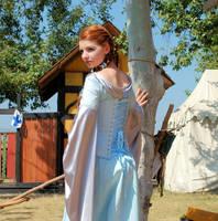 Medieval Gown 3 by Eveningarwen