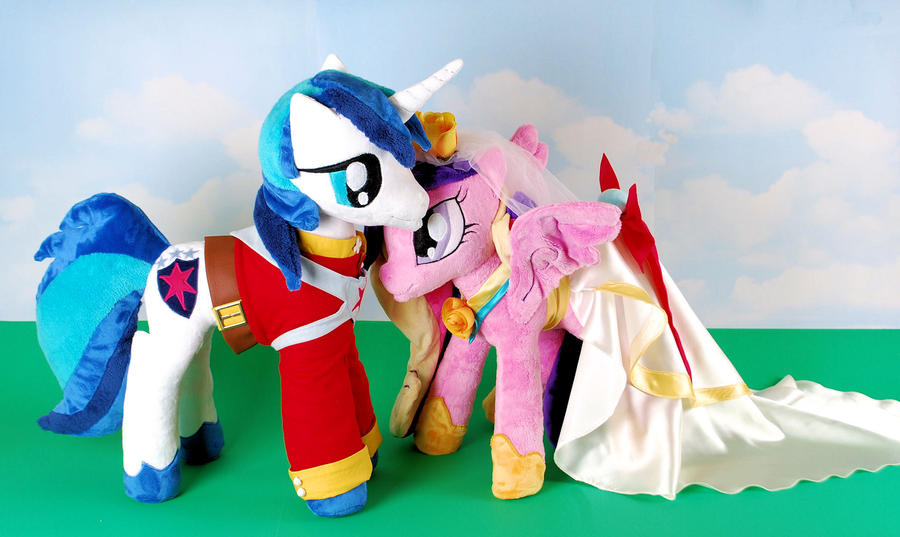 Shining Armor and Princess Cadence Wedding by Eveningarwen