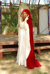 Medieval Gown and Cloak