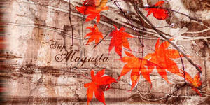 Leaves falling by Maquita