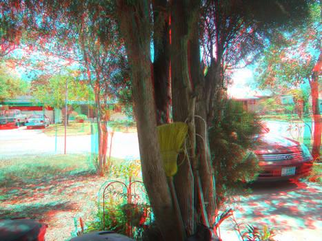 My neighborhood in 3D