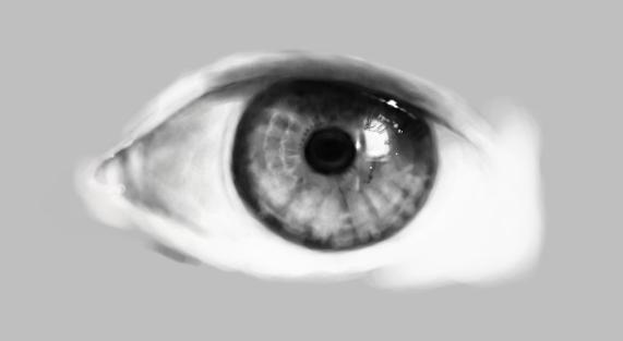 Deep Sight Digital ver. in progress... by IYIaglin
