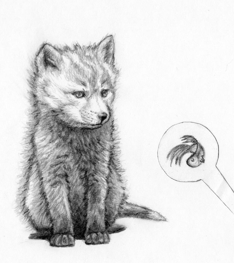 Baby fox by IYIaglin