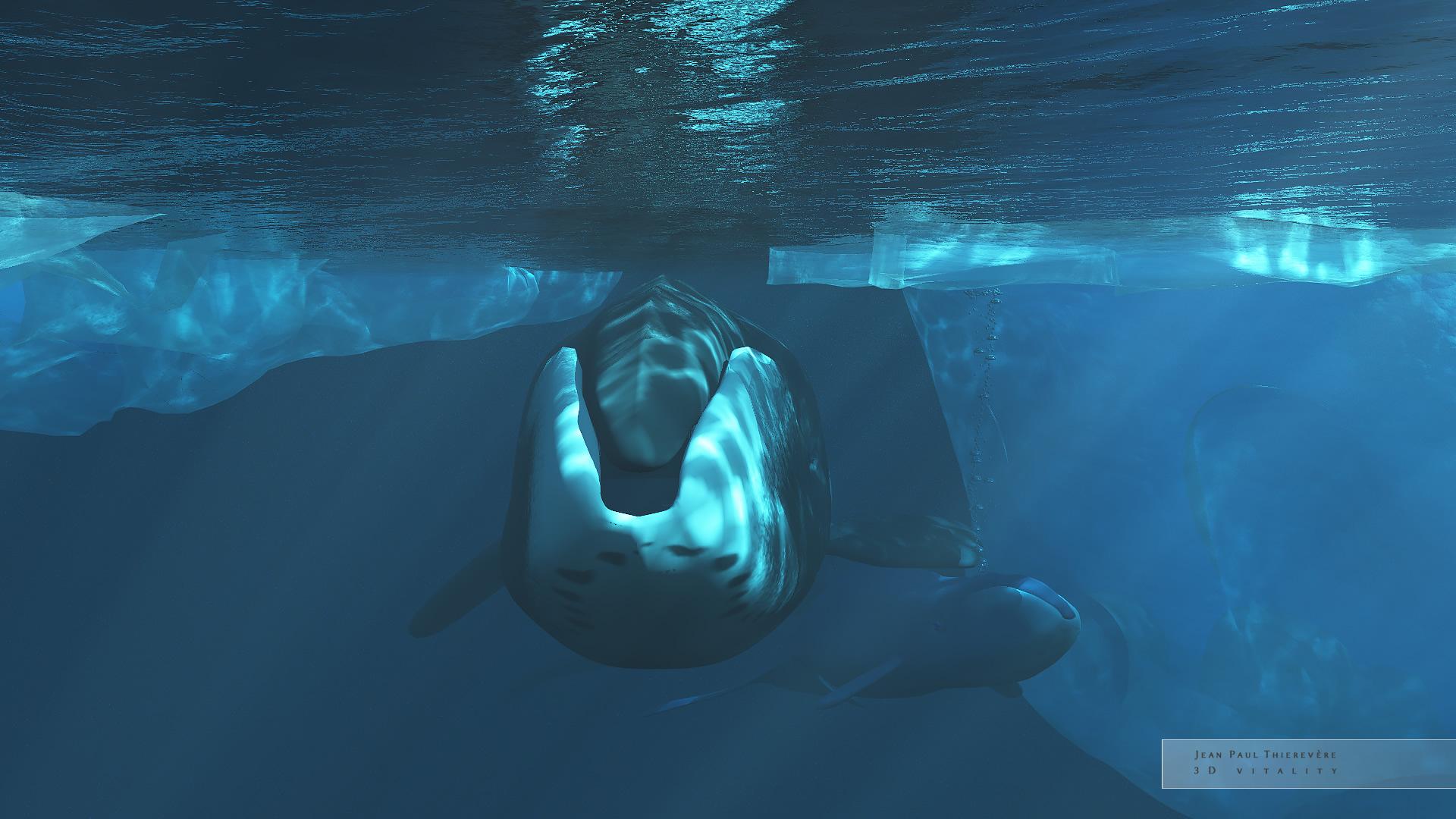 bowhead motherhood by 3DVitality