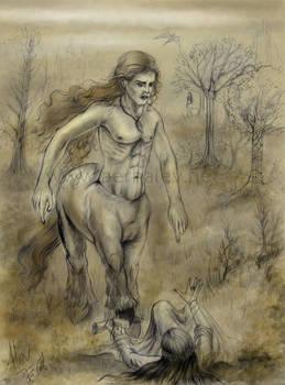 El Centauro y La Elegida