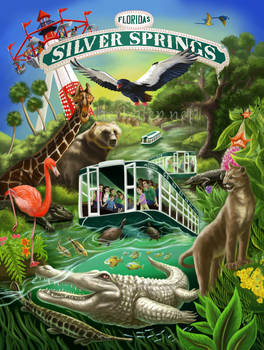 Silver Springs Poster