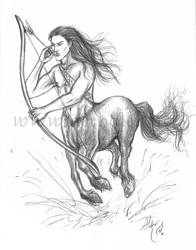 Centaur sketch by Aerhalev