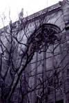 Stephans Dome 2004 by Aerhalev